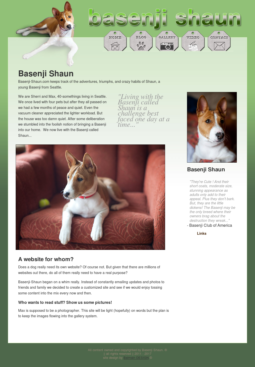 Basenji Shaun Competitors, Revenue and Employees - Owler