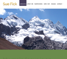 Sue Fick Competitors Revenue And Employees Owler Company Profile