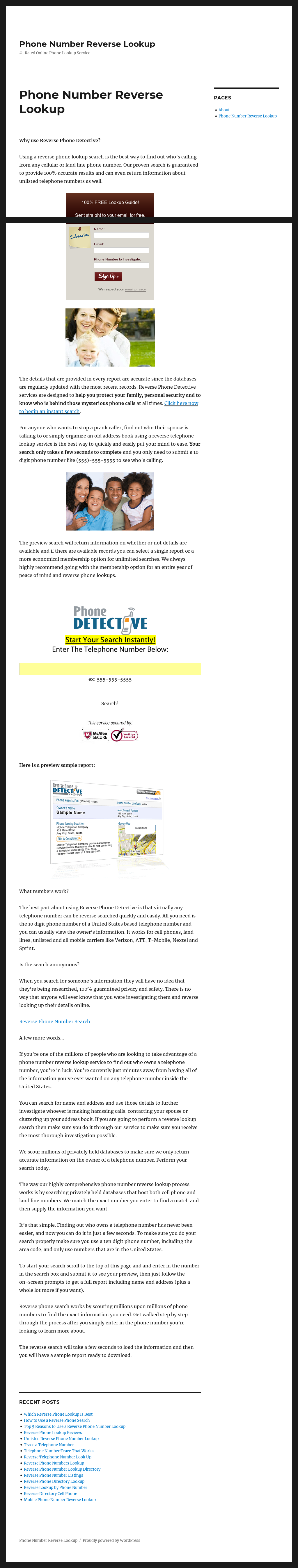 Phone Number Reverse Lookup Competitors, Revenue and