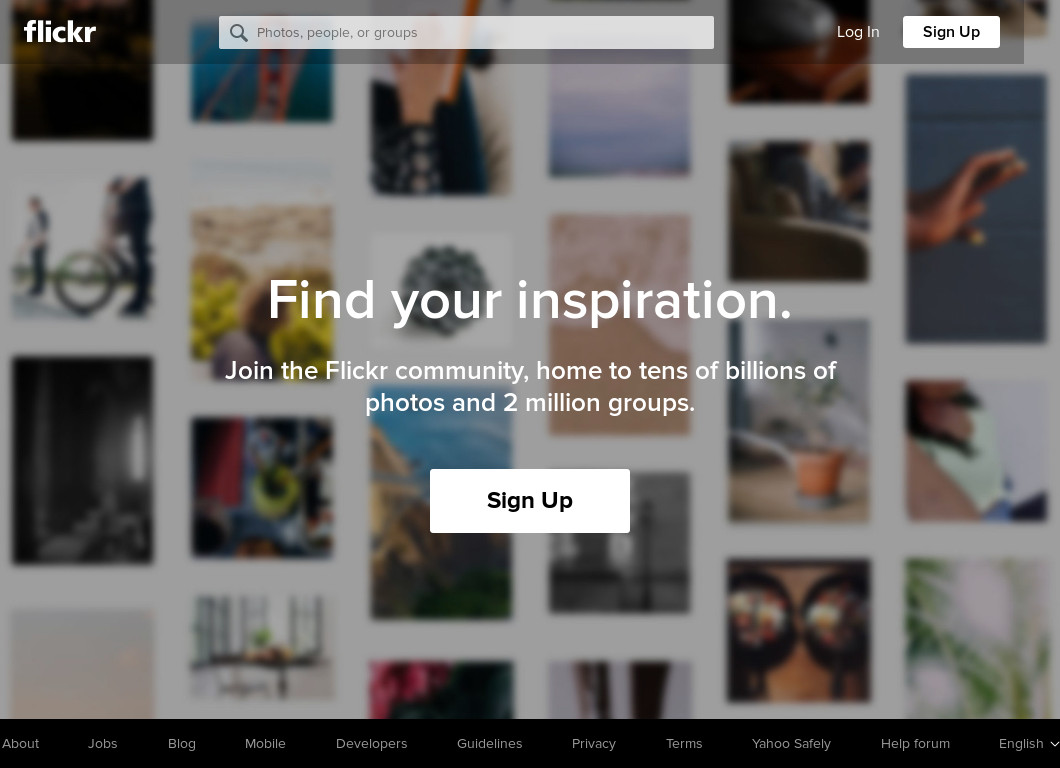 Flickr Competitors, Revenue and Employees - Owler Company Profile