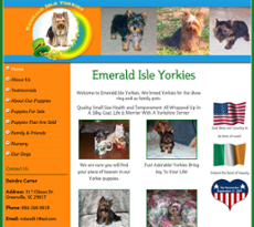 Emerald Isle Yorkies Competitors, Revenue and Employees