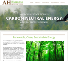 American Heritage Biomass Competitors, Revenue and Employees