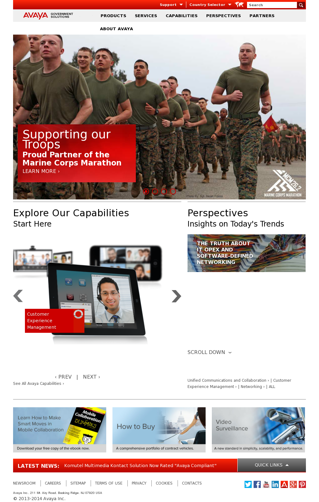 Avaya Government Solutions Competitors, Revenue and