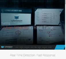 Cybereason website history