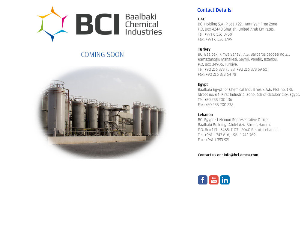 Baalbaki Chemical Industries Competitors, Revenue and