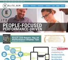 Elite SEM website history