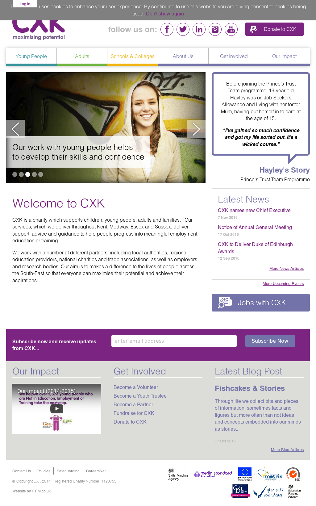 CXK Competitors, Revenue and Employees - Owler Company Profile