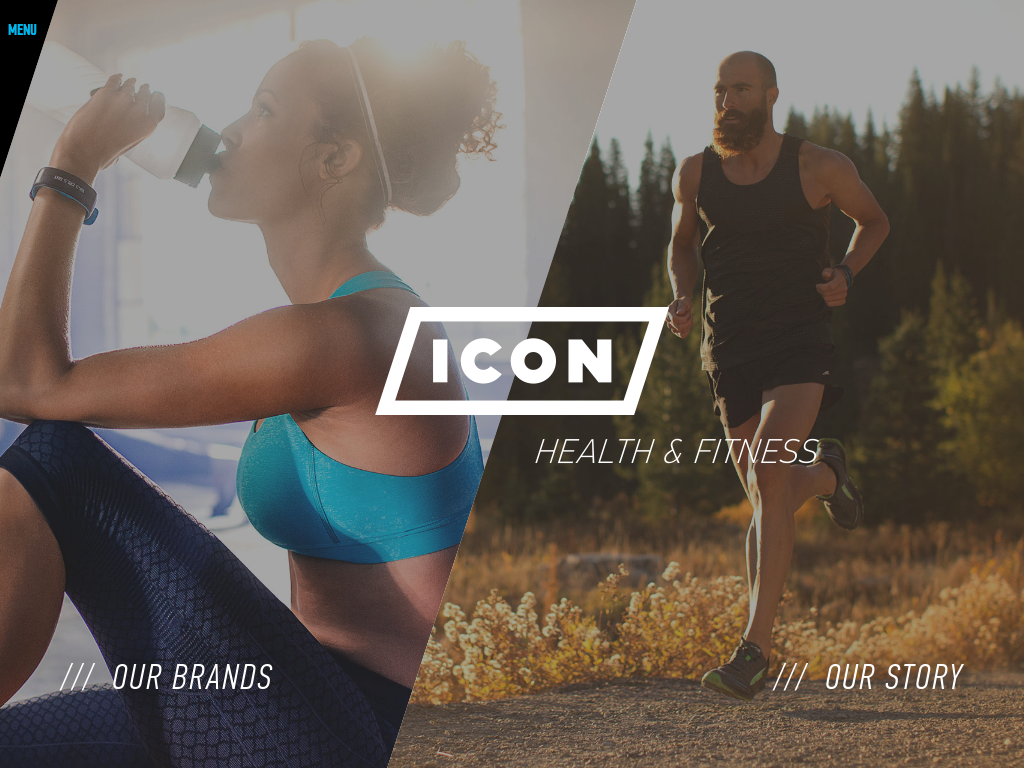 ICON Health & Fitness Competitors, Revenue and Employees