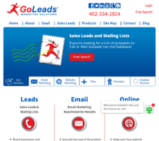 GoLeads website history