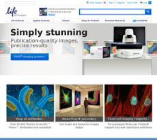 Life Technologies website history