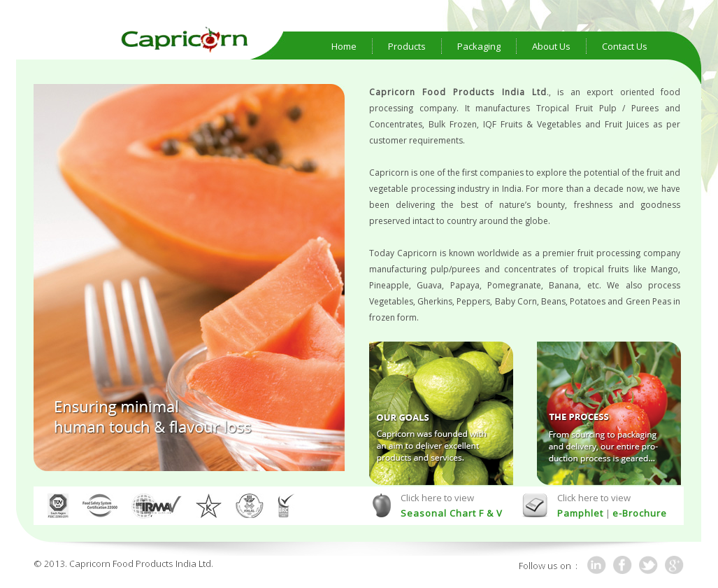 Capricorn Food Products India Competitors, Revenue and Employees