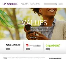 GrapeCity website history