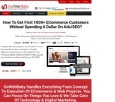 Gowebbaby website history