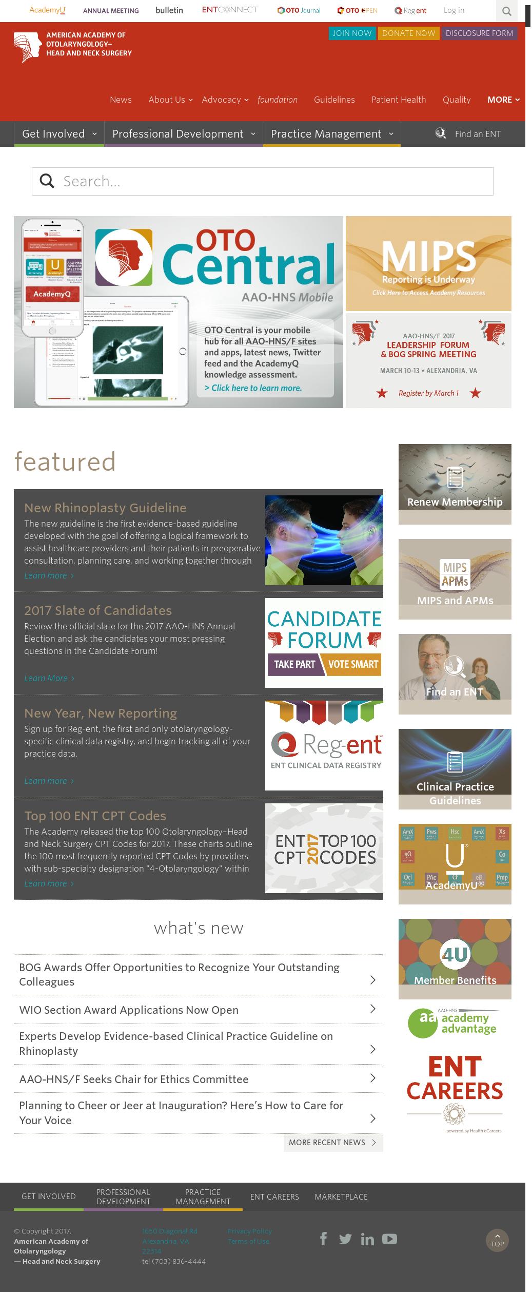 American Academy of Otolaryngology 's Latest News, Blogs