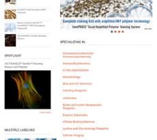 Vector website history