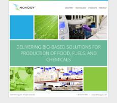 Novogy website history