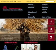 University of Minnesota website history