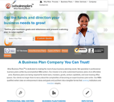 Wise Business Plans website history