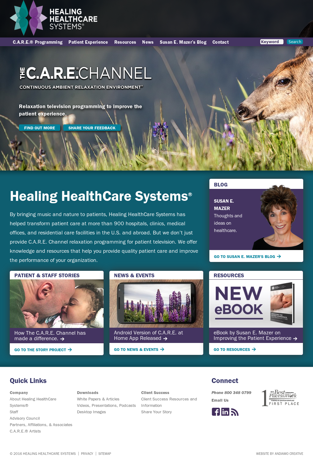 Healing HealthCare Systems Competitors, Revenue and