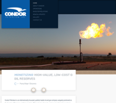 Condor Petroleum website history