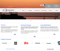 Topspin website history