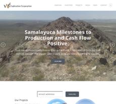 VVC website history
