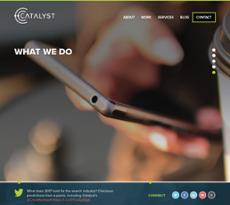 Catalyst website history