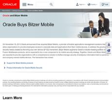 Bitzer Mobile website history
