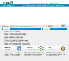 eFuture website history