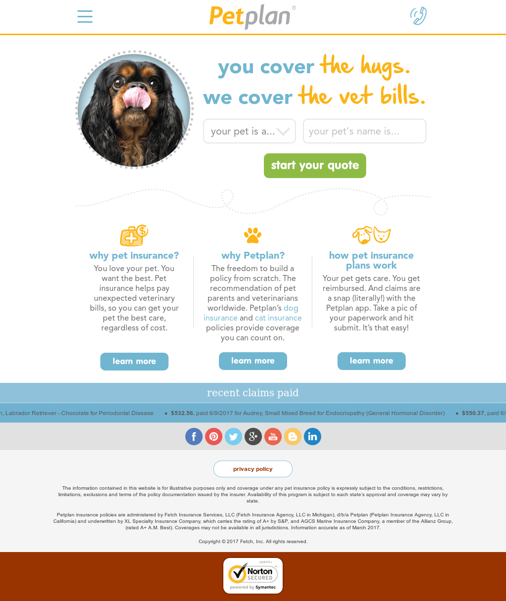 Petplan Competitors, Revenue and Employees - Owler Company