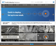 Profit Velocity Solutions website history