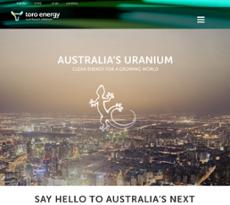 Toro Energy website history