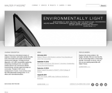 Walter P Moore website history
