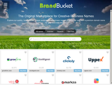 BrandBucket website history
