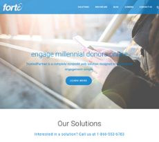 Forte Interactive website history