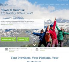 BlueOSS website history