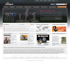 Sundyne website history
