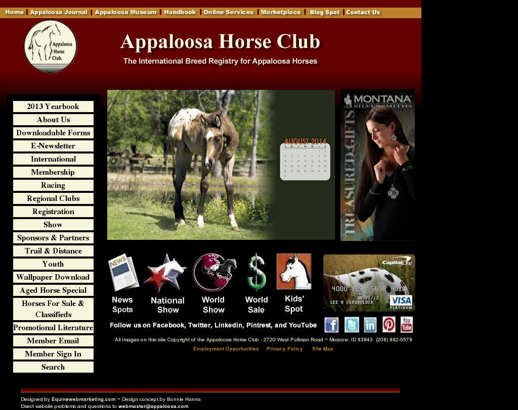 Appaloosa Competitors, Revenue and Employees - Owler Company