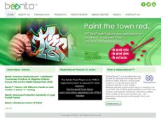 Baanto International website history