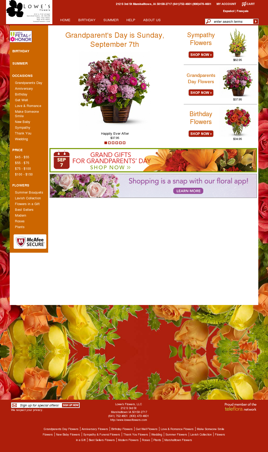 Lowes Flowers Compeors Revenue And