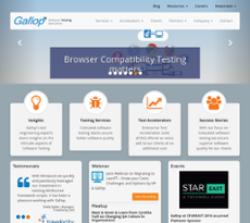 Gallop Solutions website history
