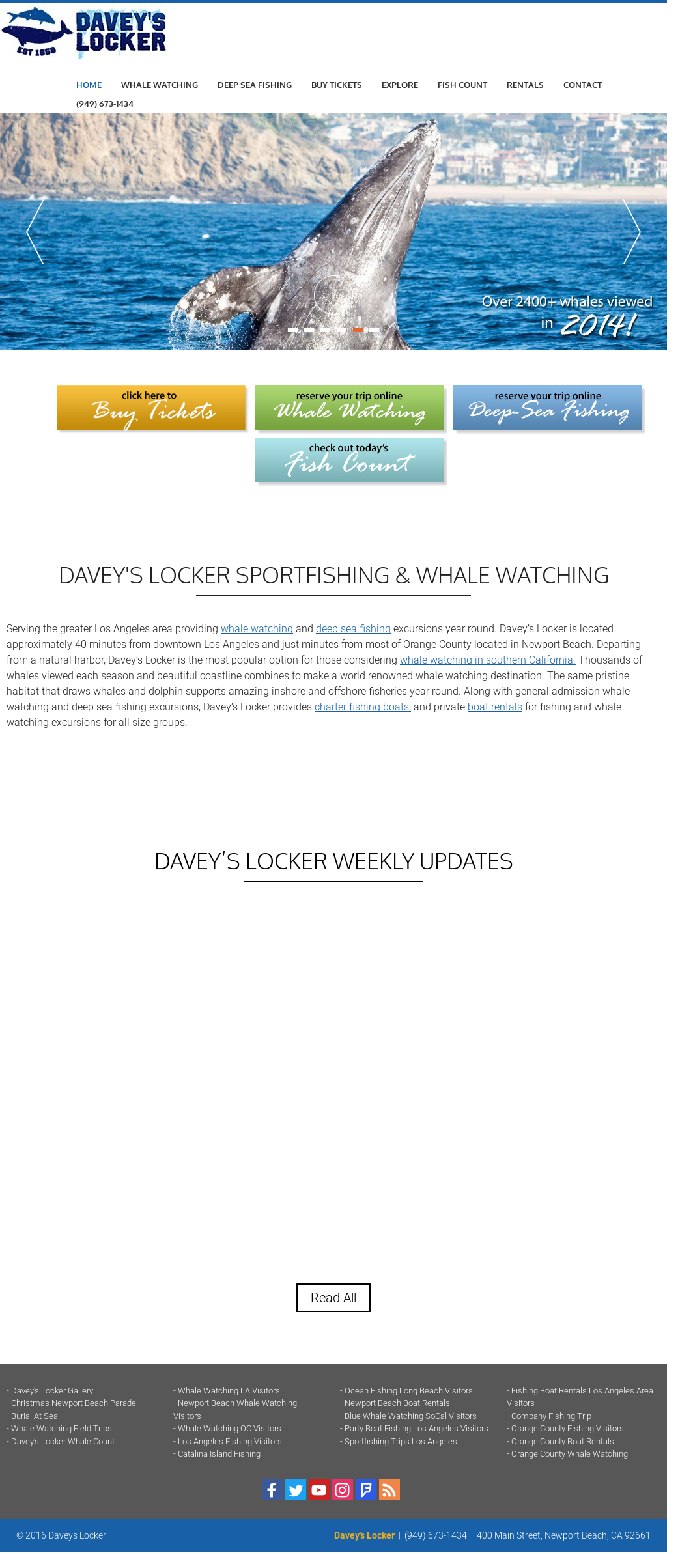 Daveyslocker Competitors Revenue And Employees Owler
