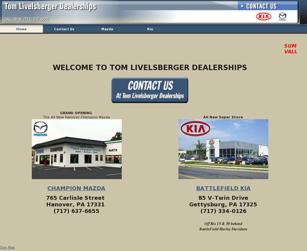 Tom Livelsberger Dealerships Competitors, Revenue And Employees   Owler  Company Profile