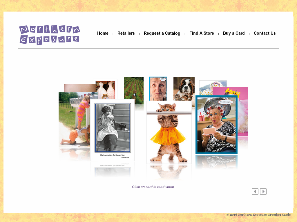 Northern Exposure Greeting Cards Company Competitors Revenue And