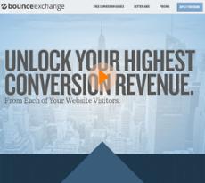 Bounce Exchange website history