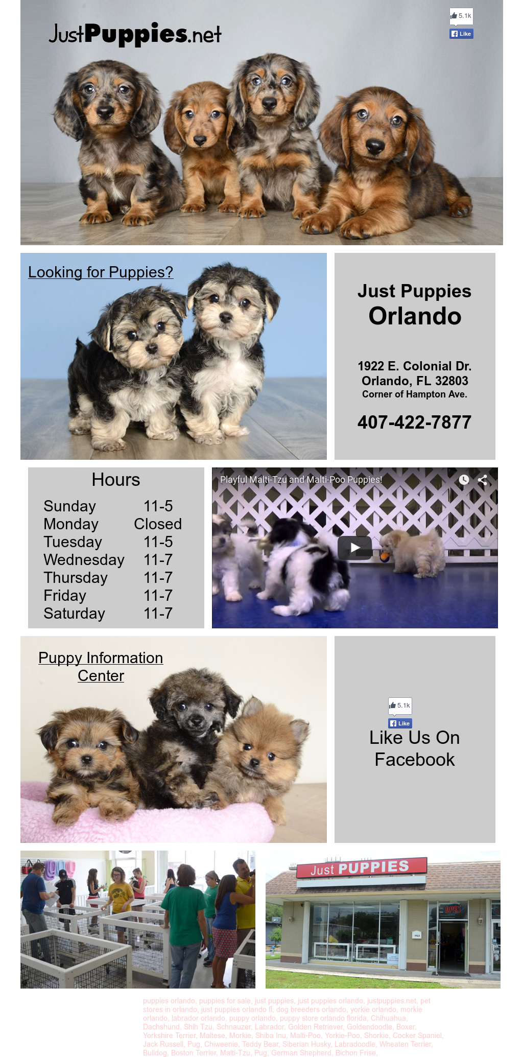 Just Puppies Competitors Revenue And Employees Owler Company Profile