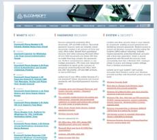ElcomSoft website history