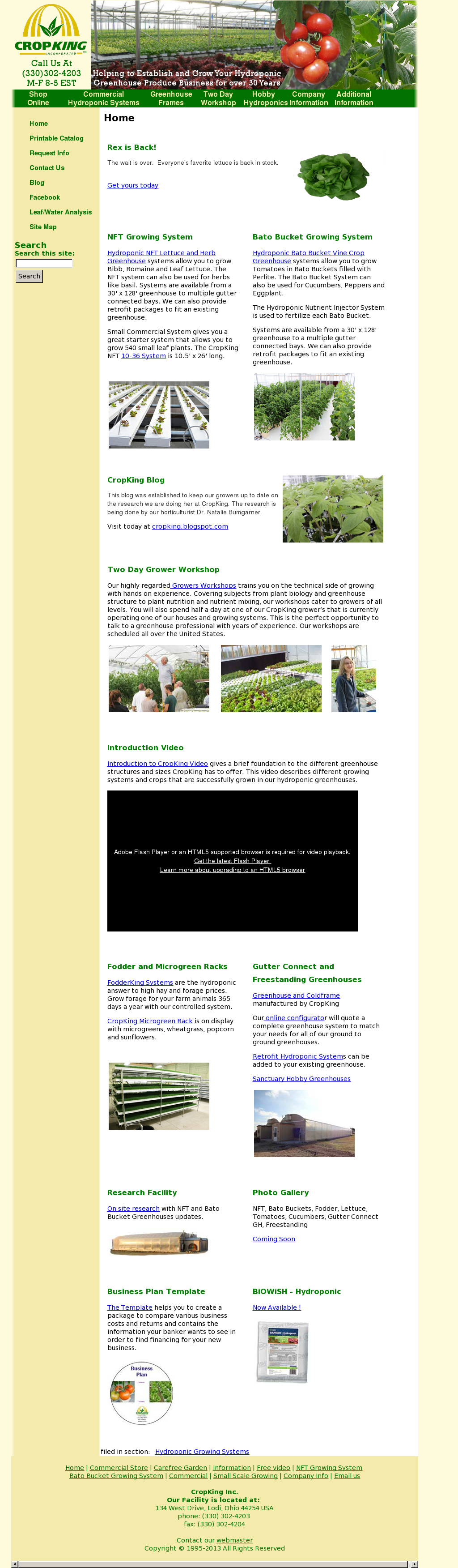 commercial hydroponic systems cost