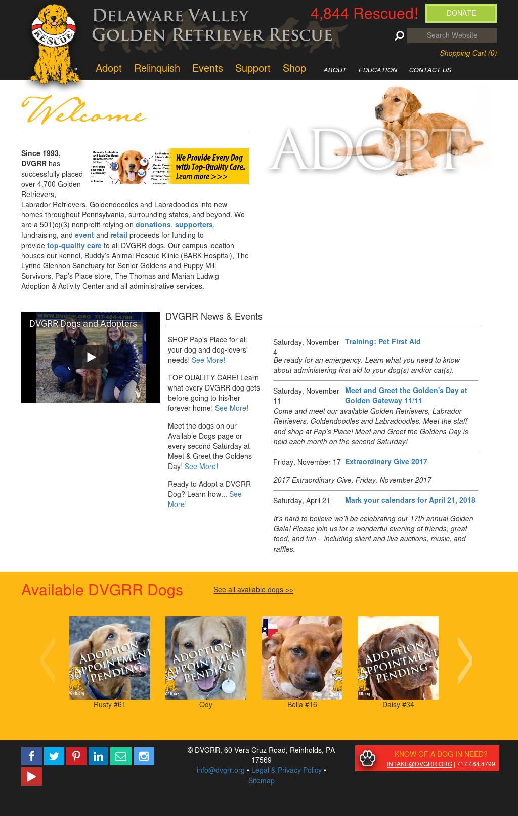 Delaware Valley Golden Retriever Rescue Competitors, Revenue and