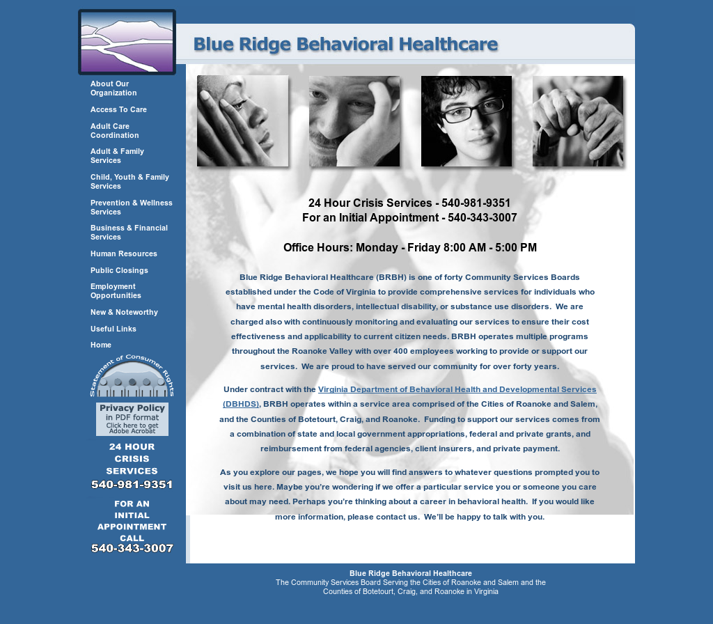 Blue Ridge Behavioral Health Competitors Revenue And Employees